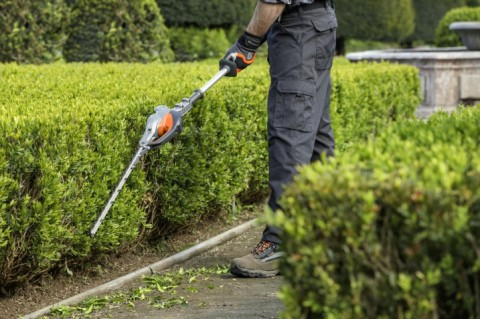 How To Trim Tall & Wide Hedges
